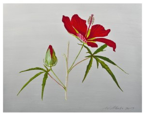 Capturing Beauty by Botanical Artists @ Cary Arts Center Gallery | Cary | North Carolina | United States